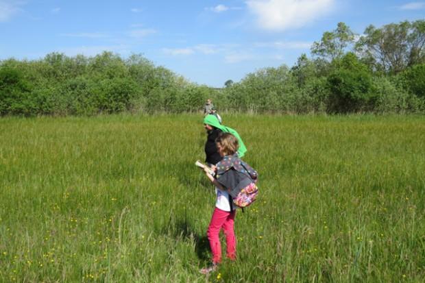 02 Umweltwoche Orchideen zählen 620x413 Umweltwoche im Naturpark begangen