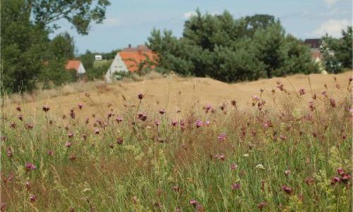 Binnendüne beitrag Naturparkerweiterung geht in die nächste  Runde