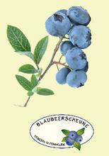 Blaubeerfest-logo