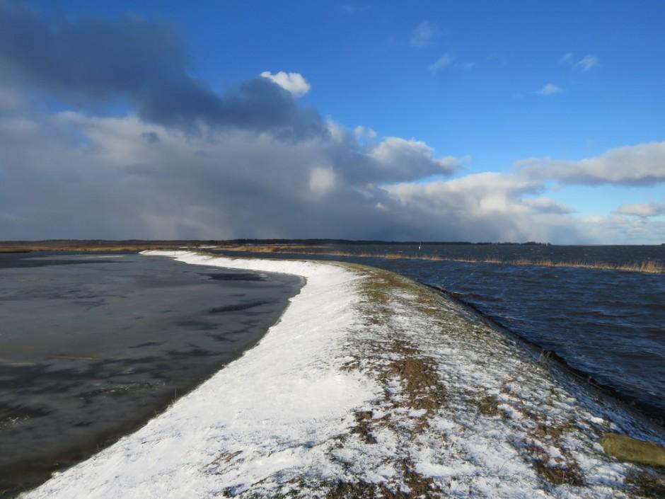 Deich Nordost 940x705 Naturpark – Stammtisch