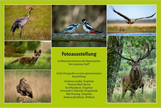 Entwurf Plakat 1 620x414 Sechs Naturfotografen   eine gemeinsame Ausstellung