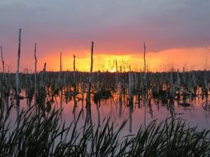 Herbststimmung am Galenbecker See (Foto: F. Joisten)