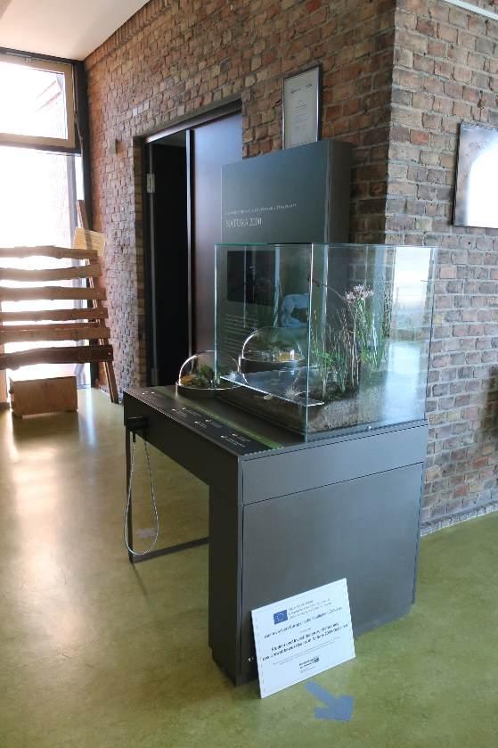 IMG 0886 klein Neues Ausstellungsmodul