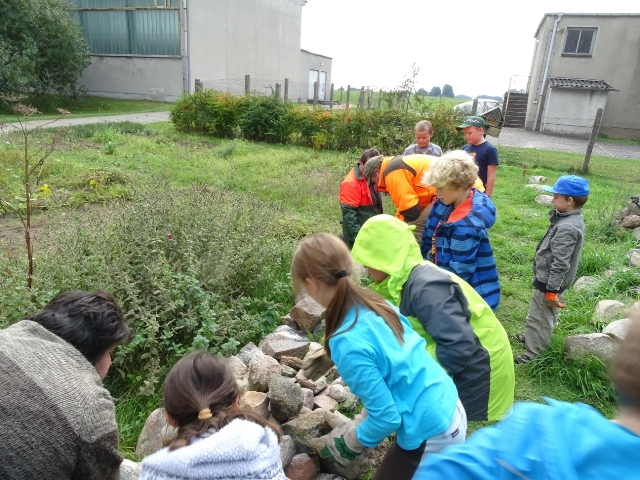 Trockenmauer Neues aus der Naturpark   Schule