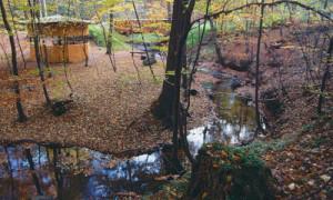 Copyright: Naturpark Barnim
