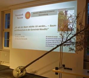 """Infoveranstaltung """"Baum- und Klimaschutz in der Gemeinde Wandlitz (Foto: Jörg-Peter Rosenfeld)"""