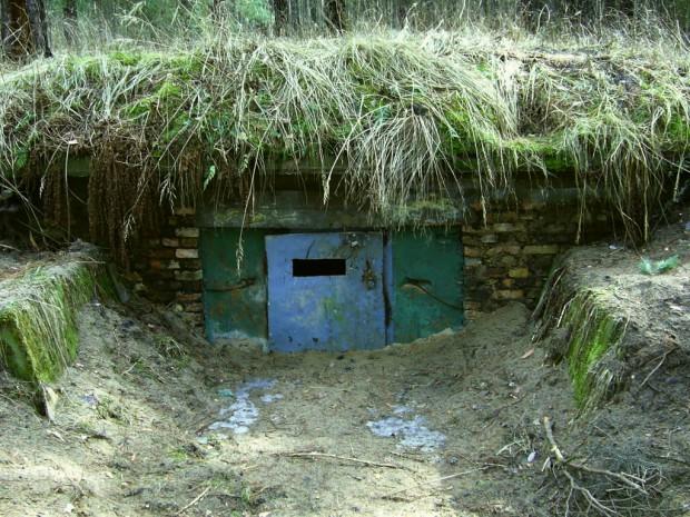 Bunker Langerönne Winterquartier 620x465 Neuer Bewohner im Naturpark Barnim – Die Bechsteinfledermaus