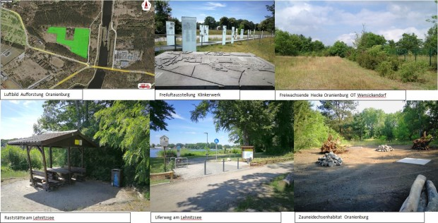 Collage Bewerbungsschwerpunkte 620x316 Wettbewerb Naturparkprojekt 2018   20 Jahre Naturpark Barnim   Beiträge zur nachhaltigen Entwicklung des Naturparks