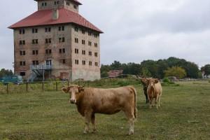 Wahrzeichen des Naturparks: In und um den Speicher von Hobrechtsfelde entsteht ein Besucherzentrum. (Foto: MOZ/Sergej Scheibe)