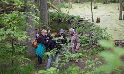 Tour 11 Wasserbaumeister 500x384 beitrag Sonntag, 20. März 2016: Dem Wasserbaumeister über die Schulter geschaut