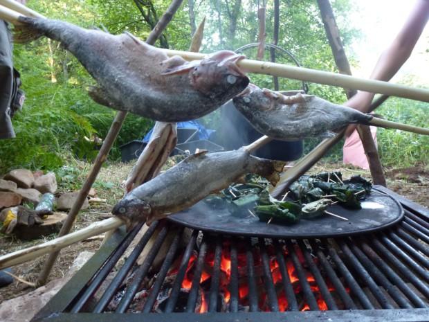 Fisch 620x465 Wildnis   Wochenende