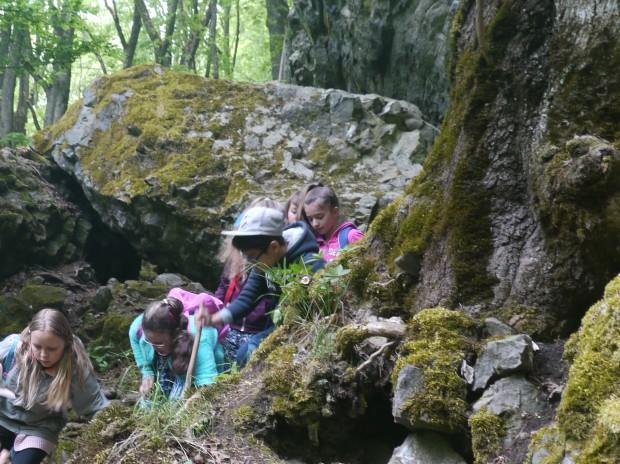 Gangolfsberg 620x464 Wie fühlt sich ein Baum an? Naturentdecker Klassenfahrt ins Biosphärenreservat Rhön