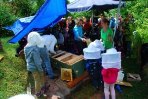 Kinderschwarm trifft Bienenschwarm