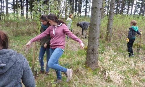 Pflanzaktion für den Klimaschutz Wald Der CO2 neutrale Begegnungsbesuch