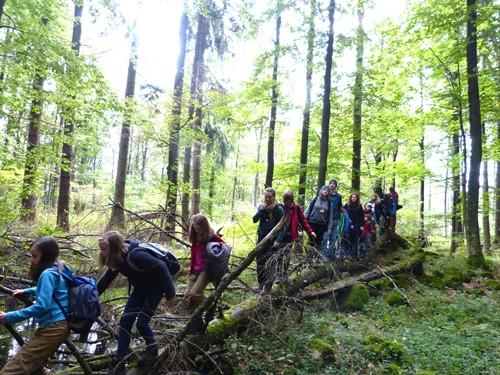 Sagenhafte Märchenwanderung Es Grimmt am Schwarzen Moor