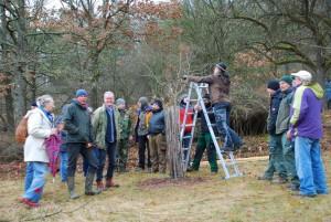 Interessierte Teilnehmer am Obstbaum-Schnittkurs mit dem Pomologen Jan Bade