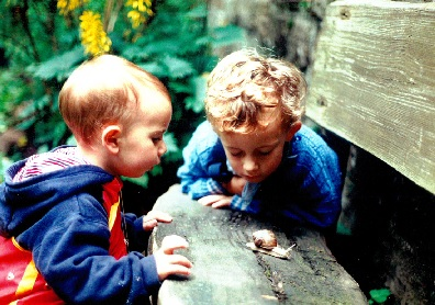 """Umgang mit der Zeit """"Gesunde Natur, Gesunde Kinder – Was wir von der Wildnis lernen können"""""""