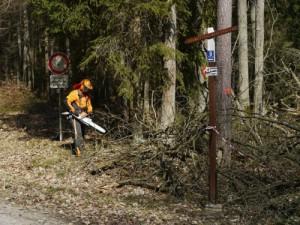 Was tun, wenn man Waldbesitzer geworden ist?