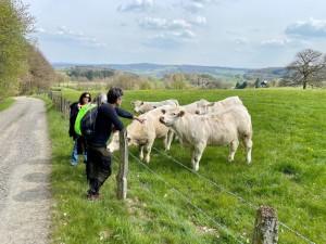 Frühling in Windeck (Bild: Jens Eichner)