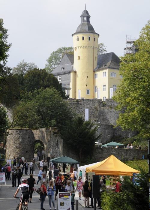 Landschaftstag SH BSO 940x14151 03.09.2017: Bergischer Landschaftstag auf Schloss Homburg