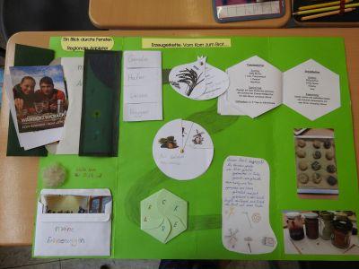 Lapbook 1 neu Naturpark Schule gewinnt beim bundesweiten Wettbewerb ECHT KUH L!