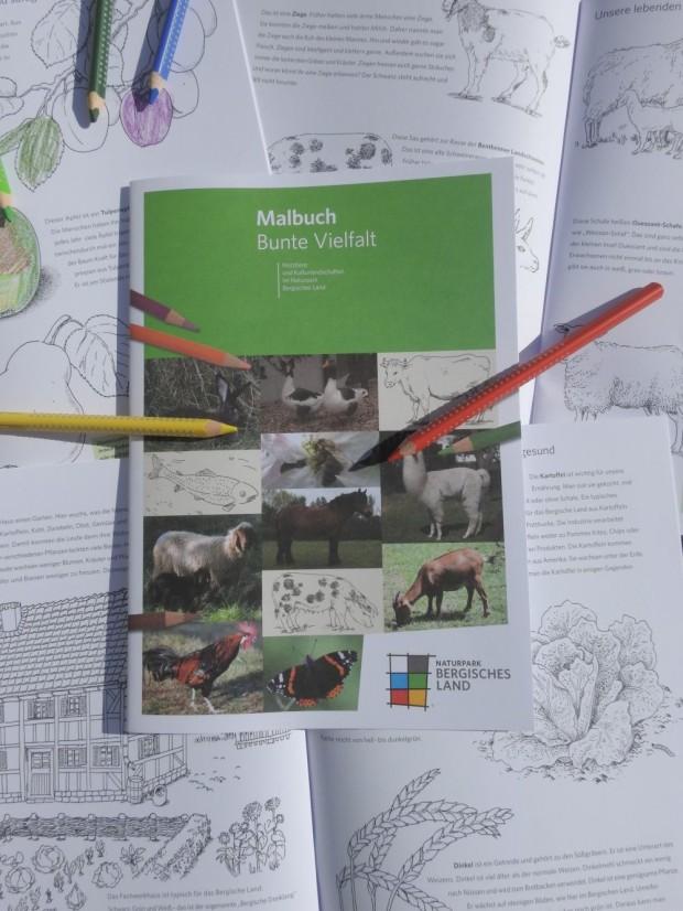 Malbuch Bunte Vielfalt Naturpark Bergisches Land 620x826 Malbuch Bunte Vielfalt   Tiere und Kulturlandschaften