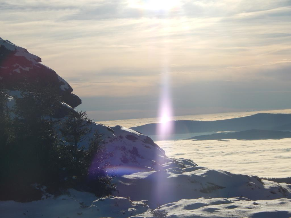 Klicken Sie auf das Bild des Tages im Fotoportal: Über den Wolken – © VDNIsabelle Auer - Bayerischer Wald