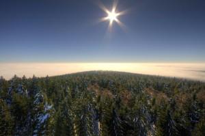 Klicken Sie auf das Bild des Tages im Fotoportal: Über den Wolken – © VDNNorbert Schreiber – Steinwald