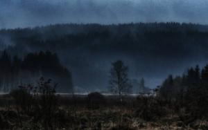 Klicken Sie auf das Bild des Tages im Fotoportal: überallnass – © VDNCarlo - Bayerischer Wald