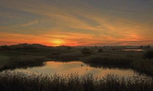Klicken Sie auf das Bild des Tages im Fotoportal: 26.10.15 um 1656 – © VDNwerner voss- Elbhöhen-Wendland