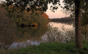 Klicken Sie auf das Bild des Tages im Fotoportal: Abend am See – © VDNwerner voss - Elbhöhen-Wendland