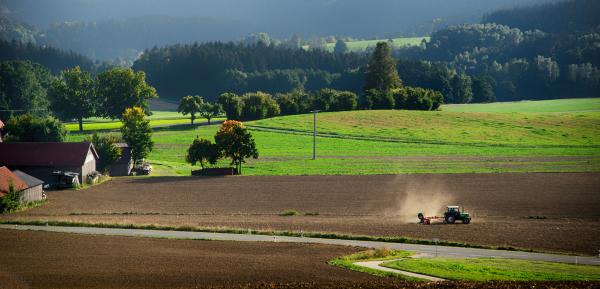Klicken Sie auf das Bild des Tages im Fotoportal: Abgeerntet – © VDNHans-Jürgen Schmidt - Nördlicher Oberpfälzer Wald