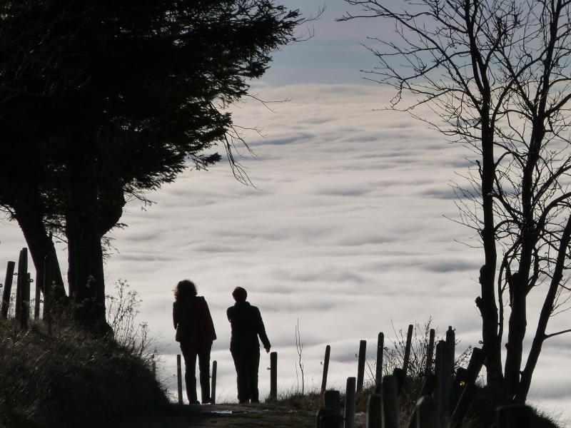 Klicken Sie auf das Bild des Tages im Fotoportal: Am Ende der Welt – VDNA.Krause - Südschwarzwald