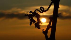 Klicken Sie auf das Bild des Tages im Fotoportal: Am Reben-Wanderweg – © VDNdietmar tunk - Spessart