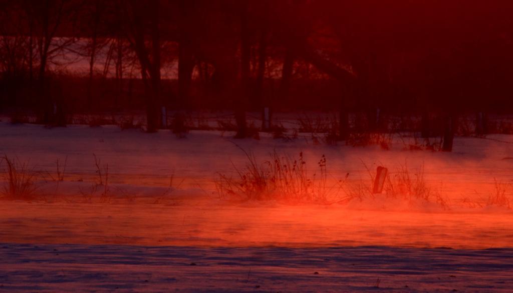 Klicken Sie auf das Bild des Tages im Fotoportal: Brennender Schnee – © VDNJessica Johnen- Rheinland