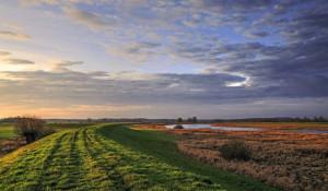 Klicken Sie auf das Bild des Tages im Fotoportal: Deichland im Abendlicht – © VDNwerner voss - Elbhöhen-Wendland