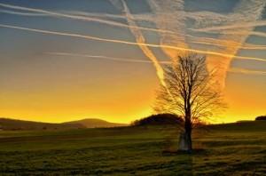 Der Sonne entgegen – © VDNB. Tanneberger – Zittauer Gebirge