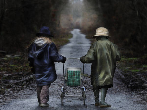 Klicken Sie auf das Bild des Tages im Fotoportal: Der Weg ist das Ziel – © VDNThomas Kaiser – Schwarzwald MitteNord