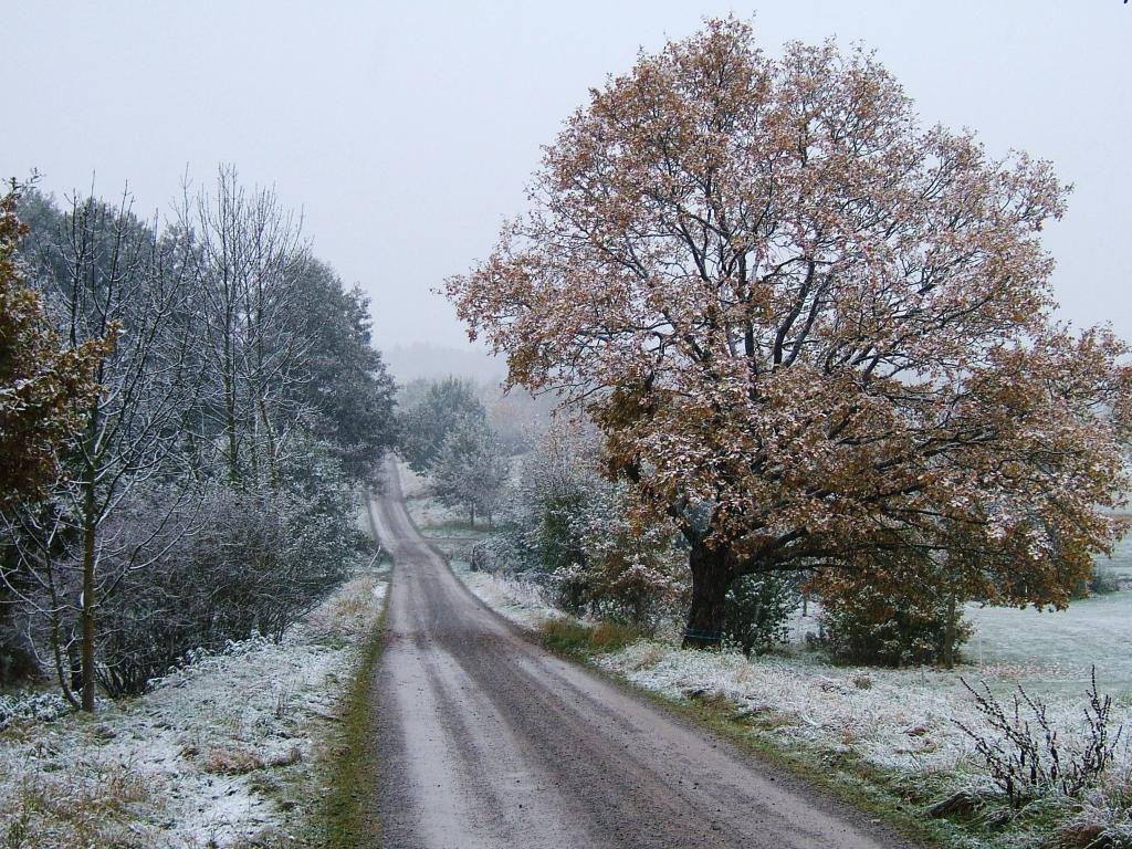 Der erste Schnee – © VDNAnnette Nüßle – Schönbuch