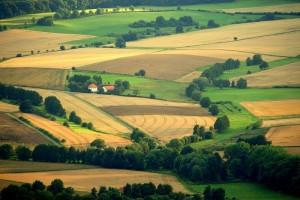 Die Linien der Feldraine – © VDNJörg Willems - Habichtswald