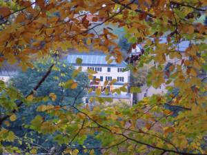 Klicken Sie auf das Bild des Tages im Fotoportal: Ein Märchenschloss – © VDNRalf Köhler - Muldenland - in Gründung