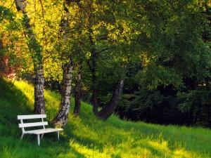 Ein Morgen im Mai – © VDNB. Tanneberger - Zittauer Gebirge