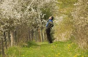 Endlich Frühling – (c)VDNHellwig - Lauenburgische Seen