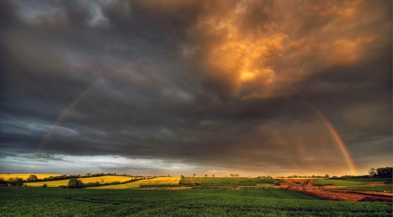 Felder und Hecken – © VDNblum - Lauenburgische Seen