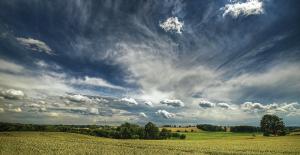 Feldraine und Hecken – © VDNblum - Lauenburgische Seen