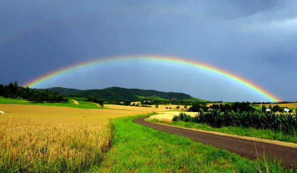 Klicken Sie auf das Bild des Tages im Fotoportal: Feldweg – © VDNThalhäuser - Stromberg-Heuchelberg
