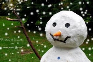 Frohe Weihnachten –© VDNkickyfoto - Schwalm-Nette