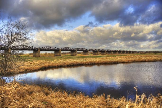Grüner Januar 2 – © VDN - werner voss - Elbhöhen-Wendland