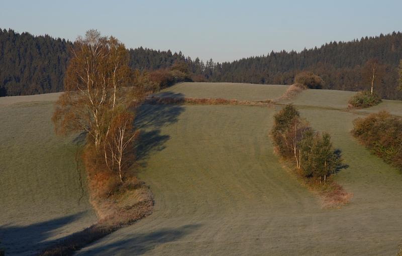 Klicken Sie auf das Bild des Tages im Fotoportal: Herbst – © VDNFritz Eichmann - Bayerischer Wald