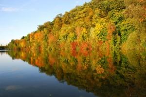 Herbst Impressionen- © VDNRW - Stromberg-Heuchelberg